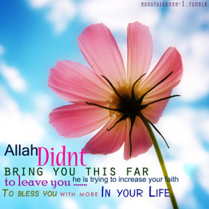 Hadith – What Allah has prepared for His pious worshipers