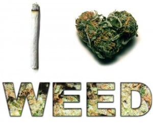 Love Weed Infographic