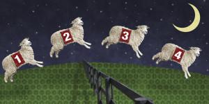 COUNTING-SHEEP-facebook.jpg