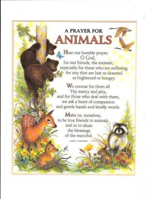 Prayer for Animals ~ Albert Schweitzer