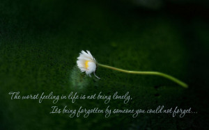 ... Being Forgotten By Someone You Could Not Forget ~ Loneliness Quote