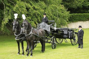 Horse Drawn Carriages Bristol Event Free Quotes co uk