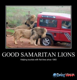 Good_Samaritans_funny_picture