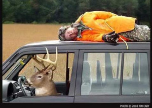 Funny-deer-hunting-pictures