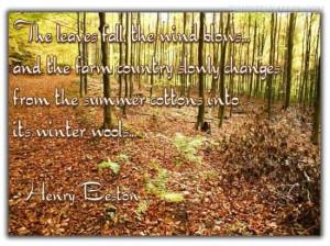 and sayings jenna bug designs autumn quotes fall sayings fall sayings ...
