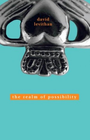 The Realm of Possibilty by David Levithan
