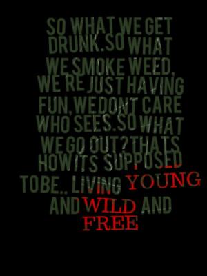 so what we get drunk.so what we smoke weed, we're just having fun,we ...