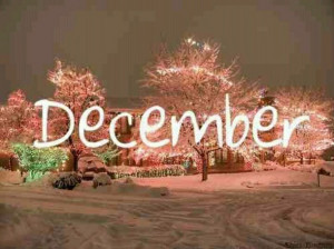 christmas, december, lights, quote
