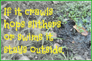 ... sign with some of these creative country sayings on my back door