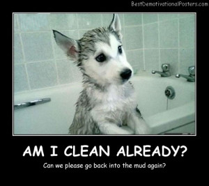 Am I Clean Already Best Demotivational Posters funny