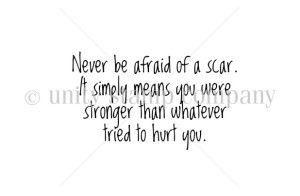 Never Be Afraid of a Scar --Sentiments--