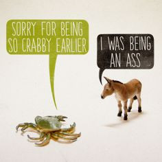 Sorry For Being So Crabby Earlier. I Was Being An Ass. -Aled Lewis ...
