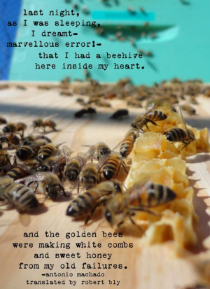 Bee Hive Photo with Antonio Machado Quote by fiercegreen on Etsy, $12 ...