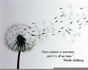 natalie-goldberg-quote-image.jpg