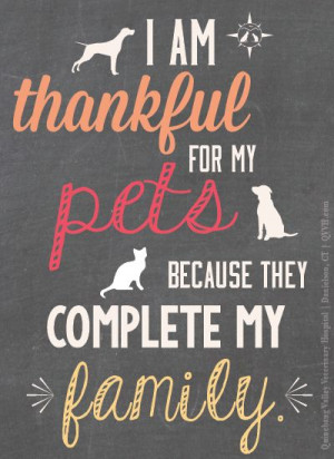Re-pin if your pets are part of your family. As a veterinarian crew ...