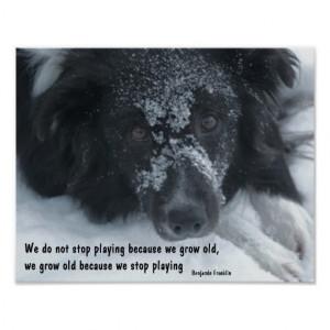 Animal Wisdom Quotes