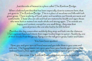 ... Side Of Heaven Is A Place Called The Rainbow Bridge - Heaven Quote