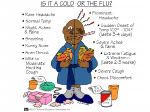 Is+It+A+Cold+Or+The+Flu.jpg