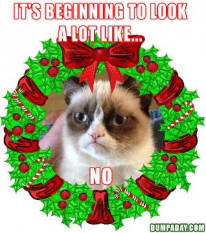 grumpy cat, its beginning to look a lot like christmas, angry cat ...