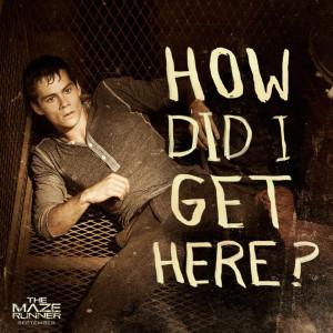 THE MAZE RUNNER Movie Stills – Thomas, Teresa & Minho in the Maze ...
