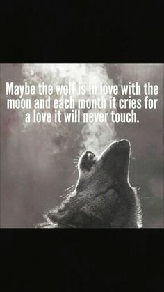 wolf quotes moon quotes more wolf quotes moon big bad wolf quotes ...
