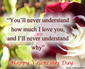 ... understand-how-much-i-love-you-and-ill-never-understand-why-love-quote