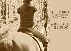 ... : Equestrian Quotes , Equestrian Problems Quotes , Horse Quotes