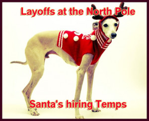 Funny holiday dog card saying, dog reindeer holiday card, santas ...