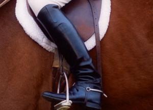horse riding, horse training, thistle ridge stables, laura kelland-may ...