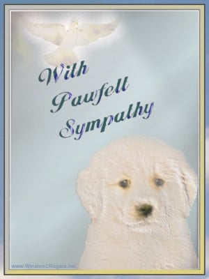 Images of Sympathy Quotes For Loss Of Pet