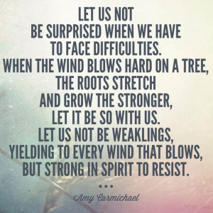 Facing difficulties with resilience. #suffering #faith Amy Carmichael ...