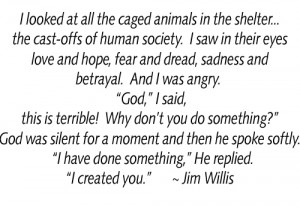 Animal, Animal Shelters, Rescue Group, Animal Quotes, Animal ...