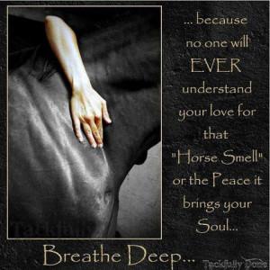 horses love quote