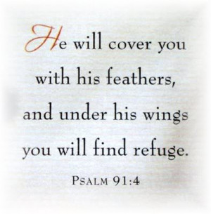 Bird Bible verse photo verse.jpg