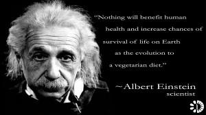 Albert Einstein, scientist (1879-1955)