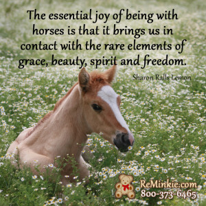 Horse Quotes for Horse Lovers