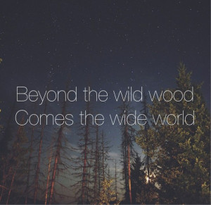 ... , quotes, relationships, sky, stars, tree, typography, wild, wood