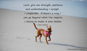 Lord, give me strength, patience, and understanding. I accept. I ...