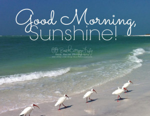 Search Results for: Beach Good Morning Quotes