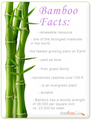 Interesting Facts That Will Have Everyone Thinking Bamboo