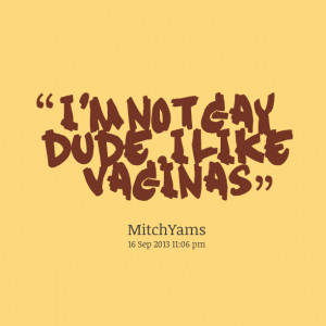 Quotes Picture: i'm not gay dude, i like beeeeeeps