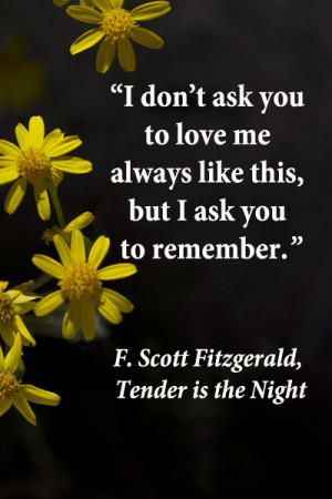 "... but I ask you to remember."" F. Scott Fitzgerald, Tender is the Night"