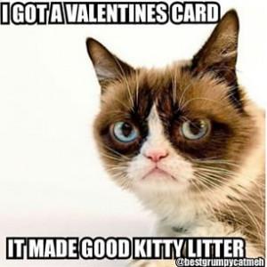 Send in your grumpy cat pics grumpy cat grumpycatquotes