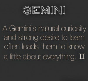 Gemini (hidden meaning: and not a lot about anything because we are ...