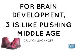 quote on how critical the first three year are to brain development.