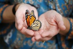 Personal Transformation Quotes Encouraging quotes & spiritual