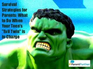 Survival Strategies for Parents: What to Do When Your Teen's