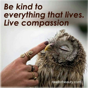 May you cultivate a boundless of love and kindness & reach out to ...