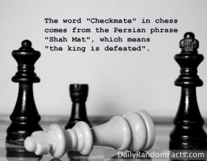 Funny Chess Quotes