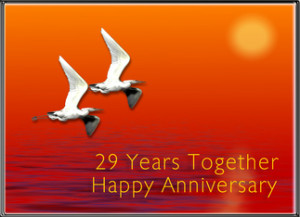 ... Birthday (2/8/2012), but Also a Very Happy 29th Wedding Anniversary (2